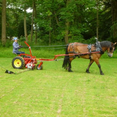 Trevor the welsh cob mowing the lawn in summer